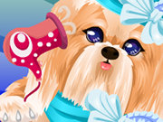 Click to Play Puppy Makeover
